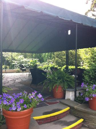 The Hedges Inn: Patio