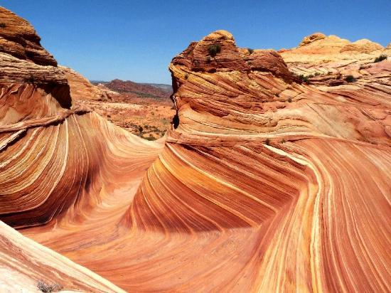 The Wave at Coyote Buttes : Wave centre