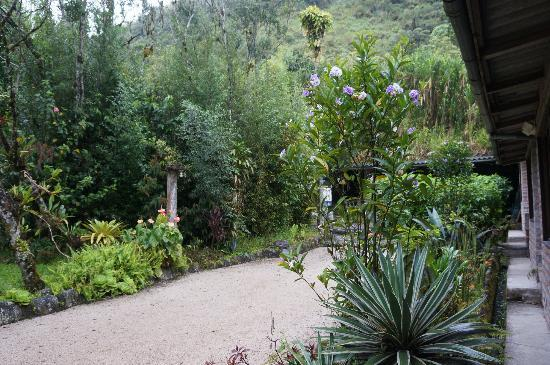 Hosteria Pequeno Paraiso: Lush landscaping