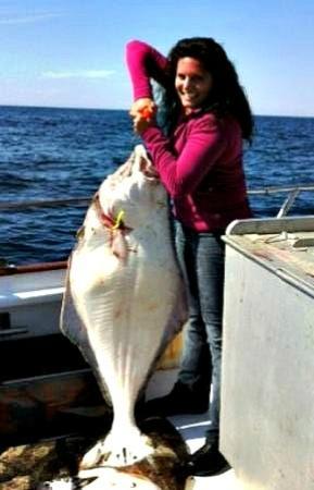 Otter Cove Resort : 2012 fishing on the Sea Hawk