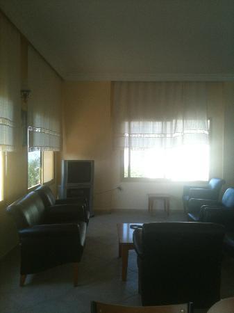 Ida Apart Hotel: Tv Room