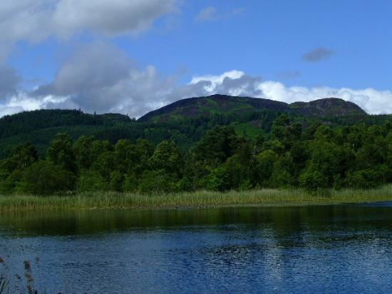 Loch of the Lowes Visitor Centre and Wildlife Reserve: Looking across the Loch from the hide