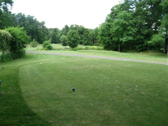 ‪‪Thunderhart Golf Course at Sunny Hill‬: Thunderhart #10 par 3, pin right center over pond 170 yrds.