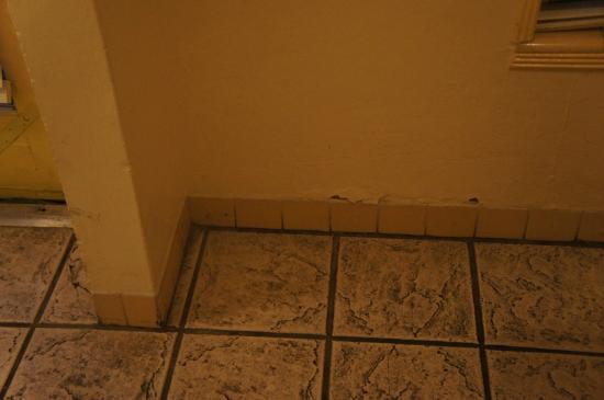 Alexander Palms Court: il pavimento... fate la prova del calzino bianco, due passi e sono neri...