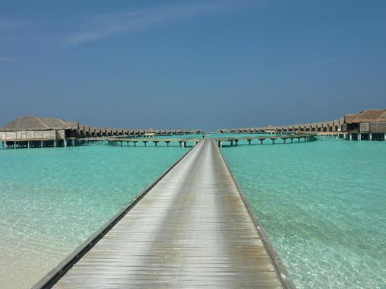 Anantara Kihavah Maldives Villas : heading back to our overwater villas