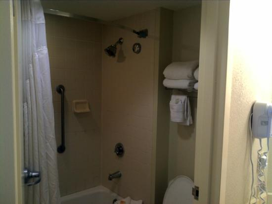 Holiday Inn & Suites Across from Universal Orlando: Bathtub and towel rack.