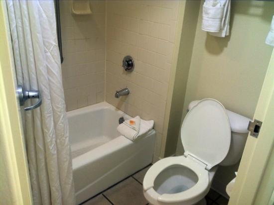 Holiday Inn & Suites Across from Universal Orlando: Small bathroom but functional and clean.
