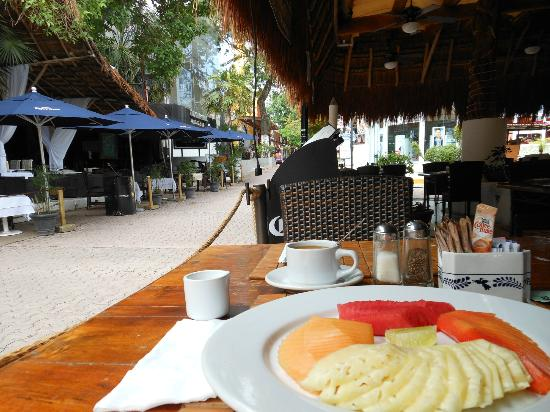 El Tukan: Breakfast at Tulipanes overlooking 5th Avenue