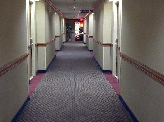 Best Western Plus Executive Inn : hall way with pop machine