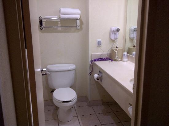 BEST WESTERN PLUS Executive Inn: Bathroom