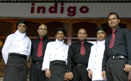 Indigo: Staff