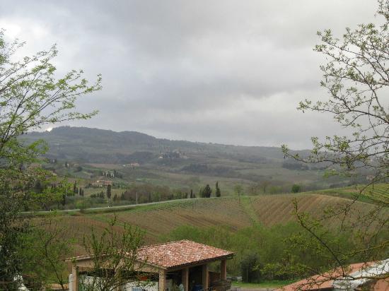 Az Agr Il Vecchio Maneggio: Beautiful views from our room.
