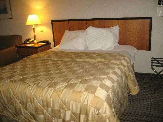Comfort Inn Airport East: Lit double et non lit Queen