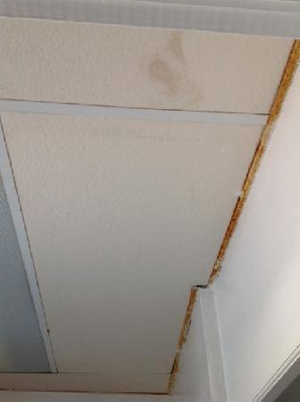 Nevada Motel: Rusty ceiling in bathroom