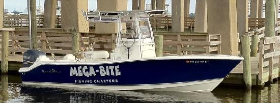 Mega-Bite Fishing Charters, LLC