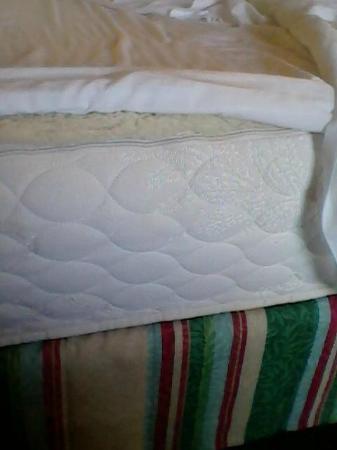 Hilton Garden Inn Green Bay: Not so adjustable bedding - thinner sheets.