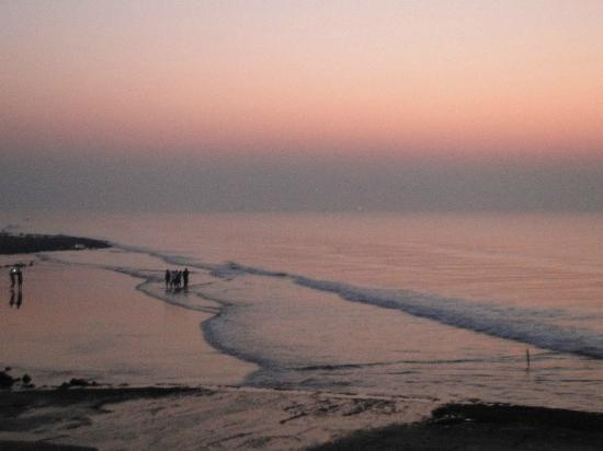 Hotel Sea Hawk : view from their private beach