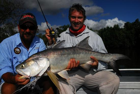 Melville Island Lodge: Typical Melville Threadfin Salmon
