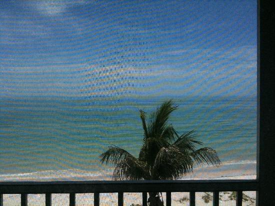 Island Beach Club: Beach View from IBC P6D