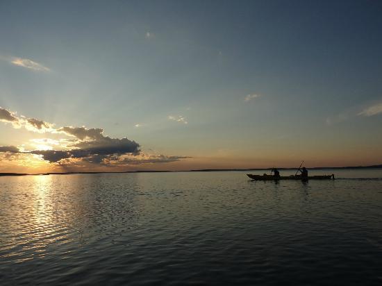 Acadia Park Kayak Tours: acadia kayak tour