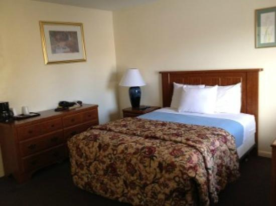 Alamo Motel : Guest Room With Single Bed