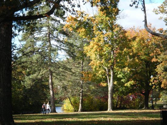 Enjoyable walk in Elm Park, Worcester, MA