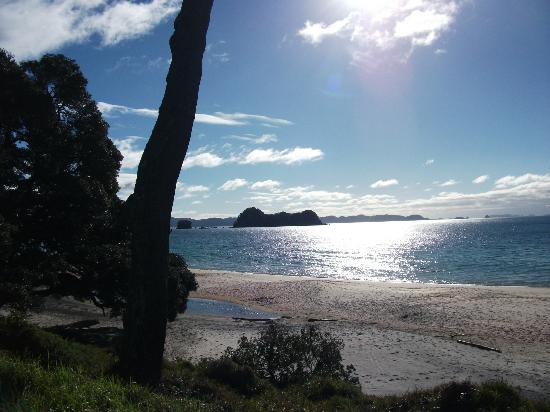 Beachside Resort Whitianga: whitianga