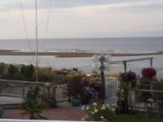 Buena Vista by the Sea: ...The view!!