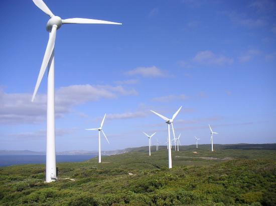 Albany Holiday Park: Wind Farm