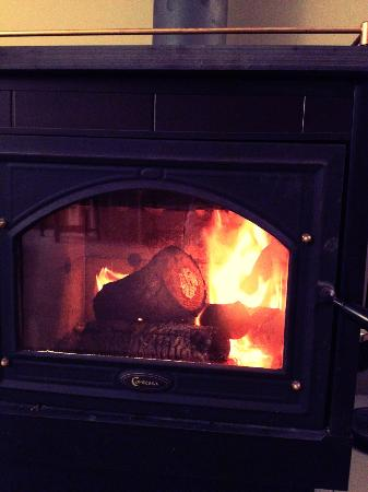 Jacaranda Lodge: The lovely fireplace