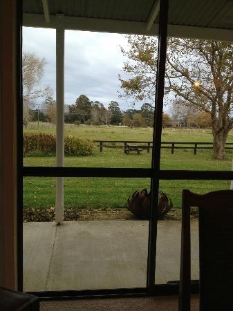 Jacaranda Lodge: Breakfast view from inside the family room