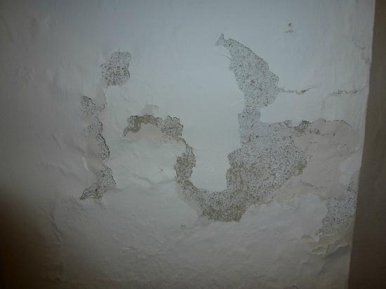 ‪هوتل أيريس فينيس: condition of walls in backpackers covered up by poster‬