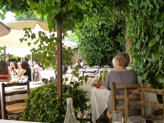 La Colombe D'Or: Cool under ivy