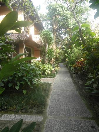 Hotel Puri Bambu: allée devant les chambres