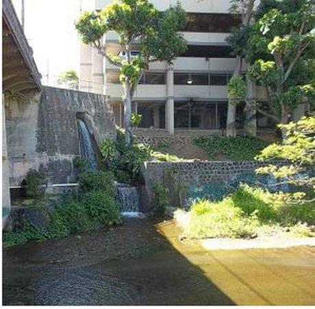 Lili'uokalani Botanical Garden: An urban