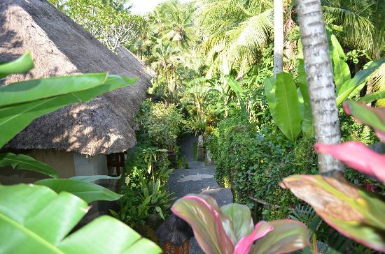 Kebun Indah: Hotel area