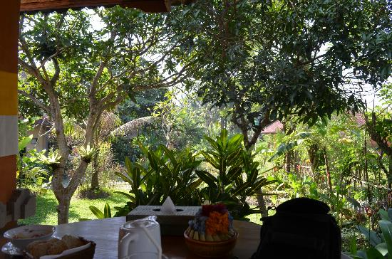 Kebun Indah: View from room
