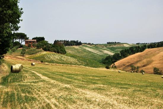 Agriturismo  Pieve Sprenna: pieve sprenna