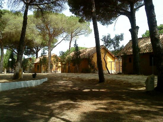 Camping Vejer: Bungalows