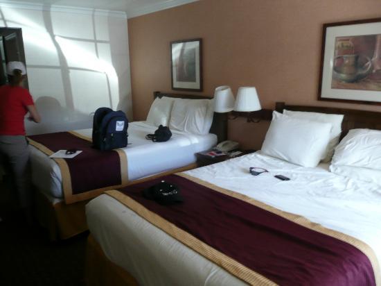 Park Vue Inn: Room