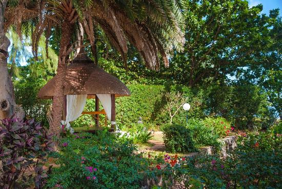 Les Lataniers Bleus: kiosque jardin