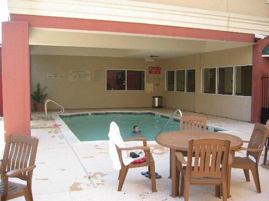 Comfort Suites Bush Intercontinental Airport: der Pool