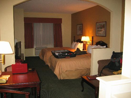 Comfort Suites Bush Intercontinental Airport: unser Zimmer