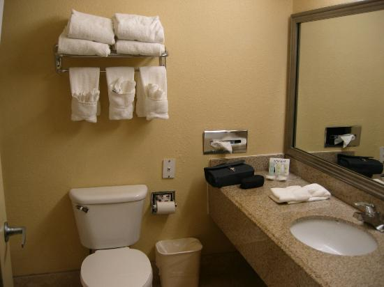 Comfort Suites Bush Intercontinental Airport: das Bad