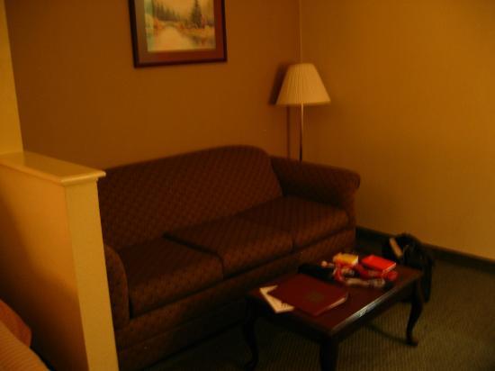 布什洲際機場康福特套房酒店照片