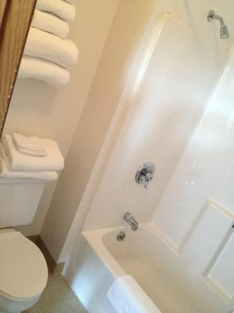 Bathroom Sinks Toilets And Tubs the bathroom has no sink in it - just tub and toilet. sink is