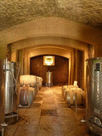 Torraccia di Chiusi: theWine Celler/Cave