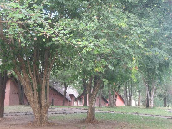 Gache Gache Lodge: View of Chalets