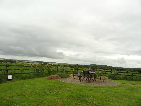Bunratty Meadows Bed and Breakfast: View in front of B&B