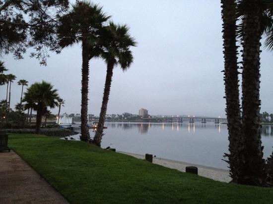 Baleen San Diego Mission Bay Park Restaurant Reviews